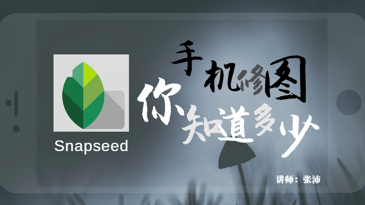 【手机修图】Snapseed修图 你知道多少?