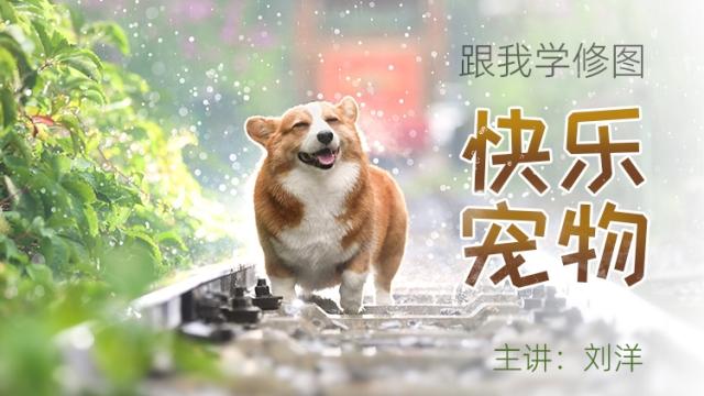 【跟我学修图】快乐宠物