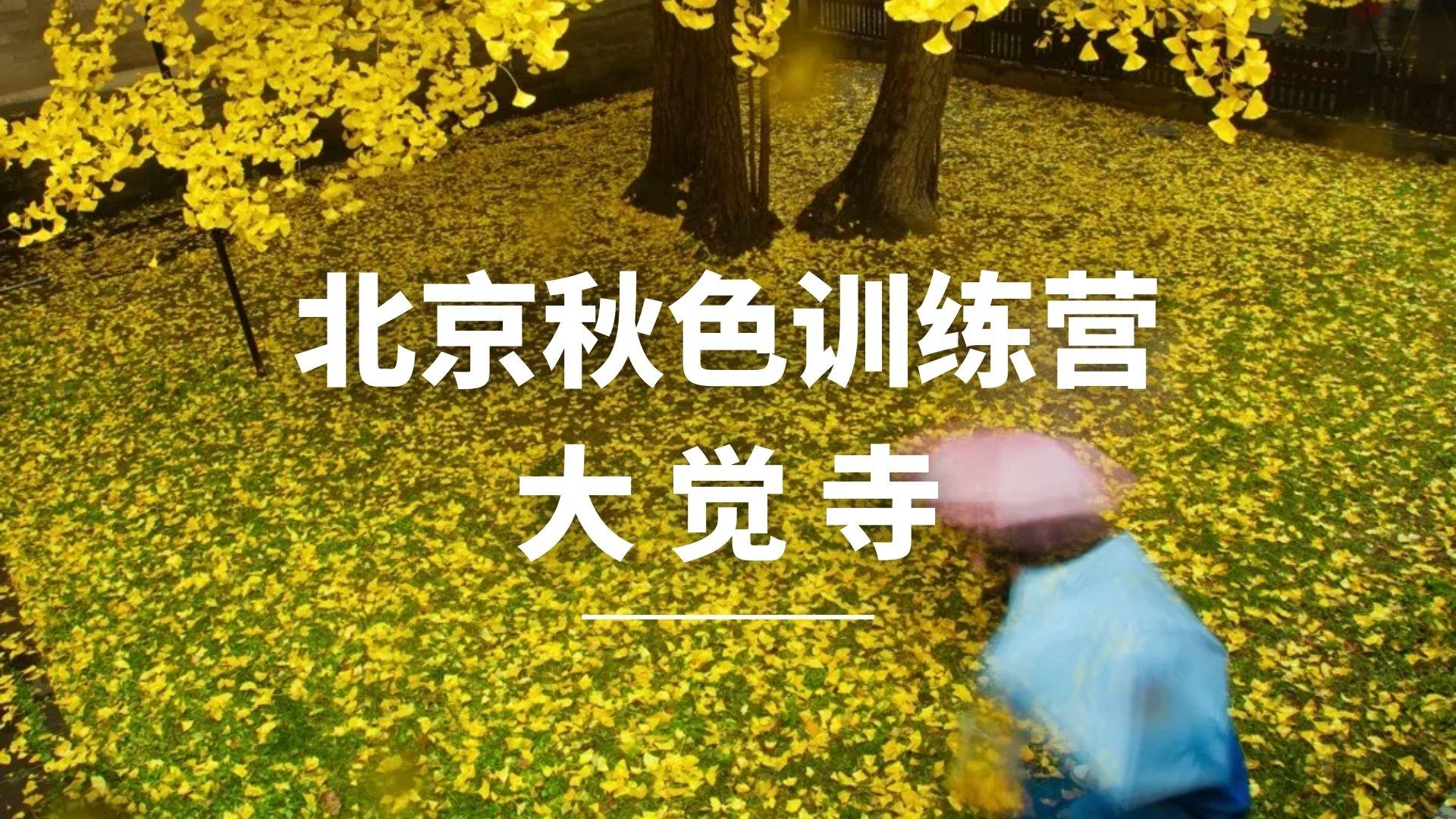 北京秋色训练营——大觉寺